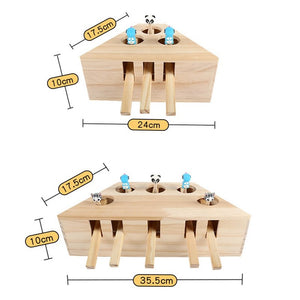 Interactive 5-holed Wooden Exercise Cat Toy