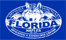 Load image into Gallery viewer, Florida Shy Wolf Ladies V-Neck Shirts