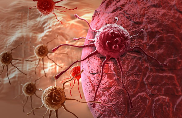 What Causes Cancer? These 9 Things May Increase Your Risk