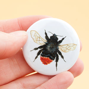British Bee Fridge Magnets - Pack Of 5