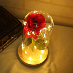 Beauty and The Beast Enchanted Rose