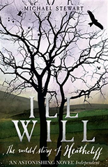 Ill Will by Michael Stewart