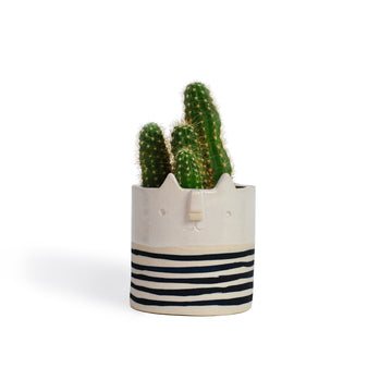 Atelier Stella Mini Stripey Cat Pot