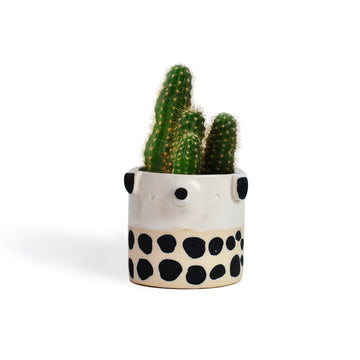 Atelier Stella Mini Spotty Dog Pot