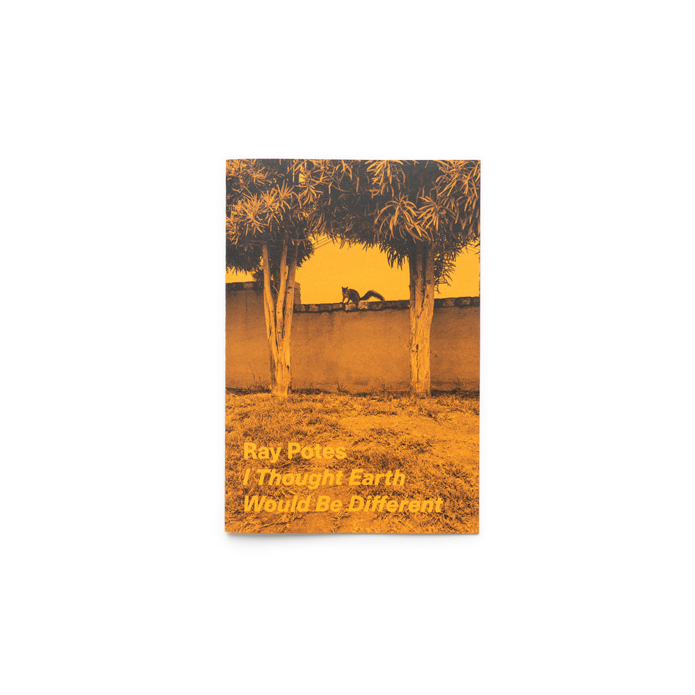 I Thought Earth Would Be Different By Ray Potes