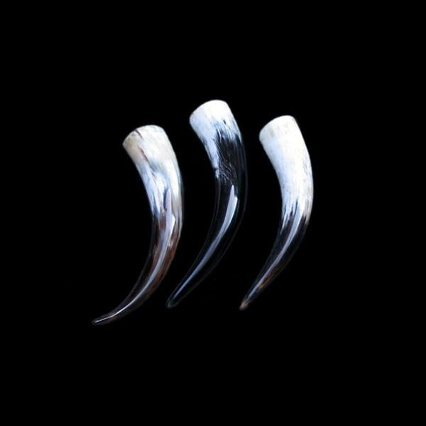 Small Polished Drinking Horn - Viking Drinking Horns