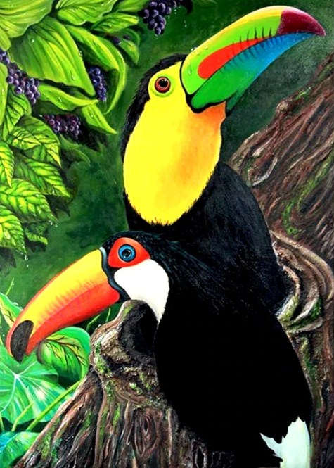 Toucan Pair Diamond Painting