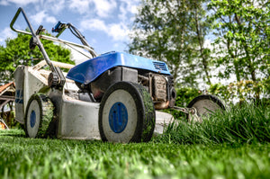 How to Keep Your Lawn in Top Shape This Summer