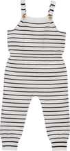 Load image into Gallery viewer, Self Yarn Striped - Overalls