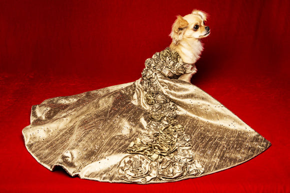 Crystal Rose Dog Gown