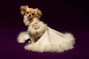 Snow Queen Dog Gown