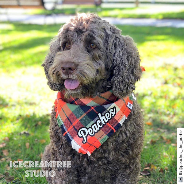 Adventure Orange Plaid Bandana - Tie on Classic Flannel Pet Bandana Scarf