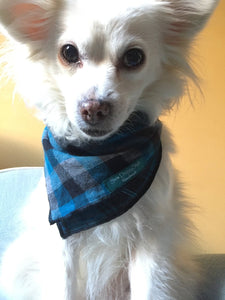 Dog Bandana, Dark Teal Plaid Bandana, Gray and black Bandana, Plaid Bandana
