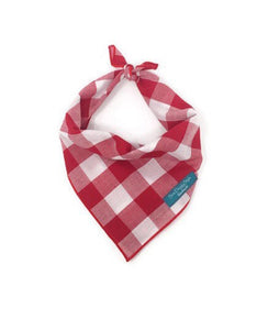 Gingham Bandana, Red and White Checkers, Dog Bandana, Large Checkers