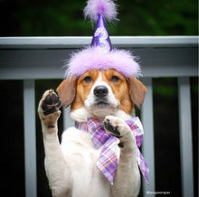 Load image into Gallery viewer, Purple and Pink Dog Bow, Birthday Photo Props, Birthday Bow, Plaid Bow with Collar