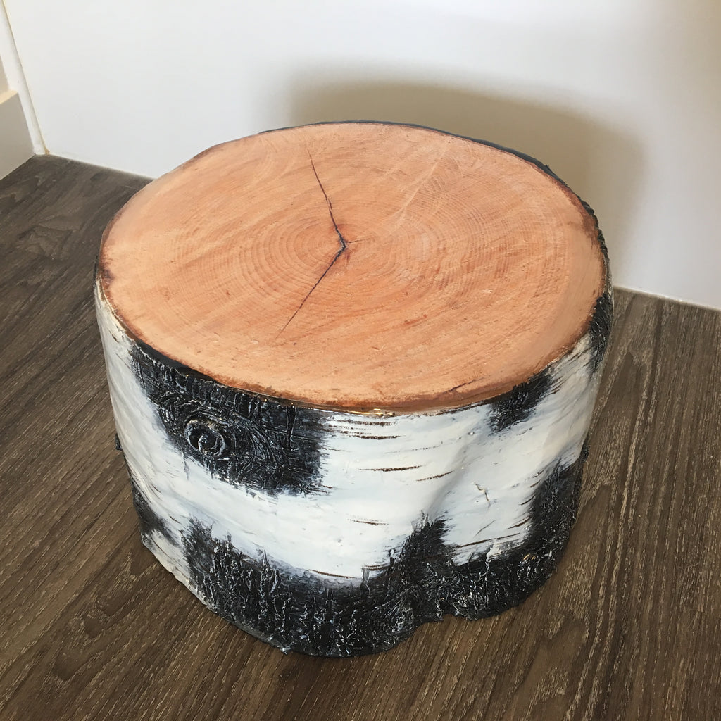 close up of the large birch stump