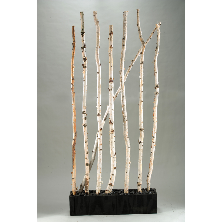7′ Birch Screen