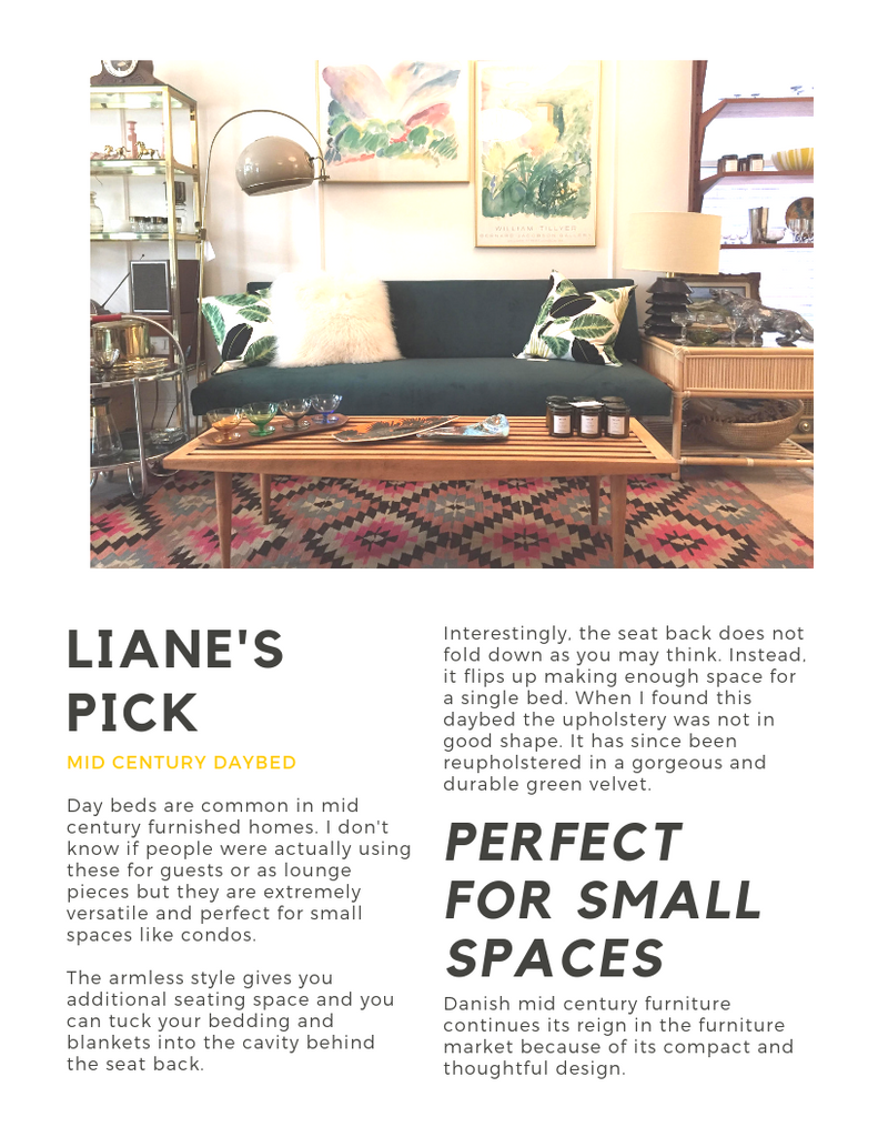 Liane's pick mid century modern daybed