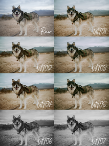 Wooftribe Preset Pack