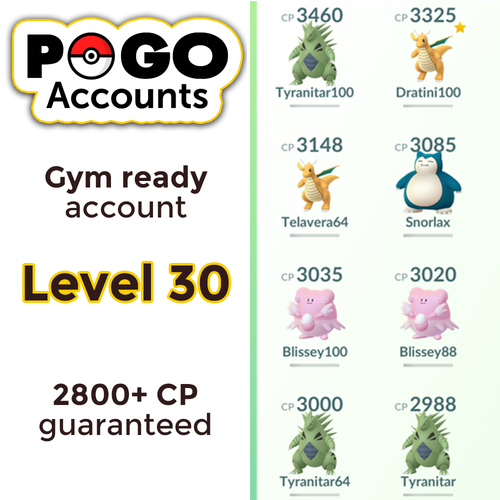 Gym Ready - Level 30 Account - www.pogo-accounts.shop