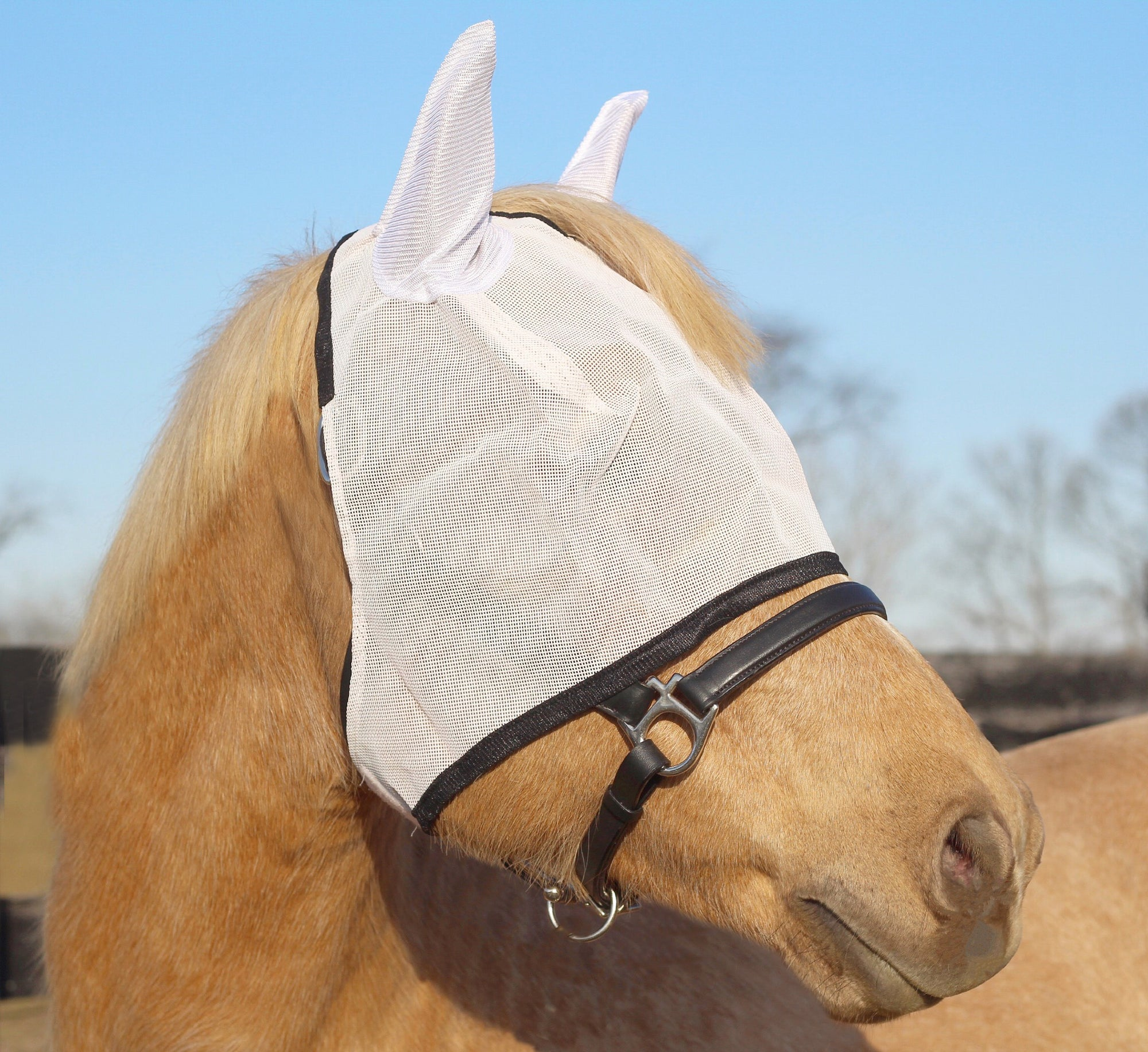 Fly Masks with Ears - TuffRider - Breeches.com