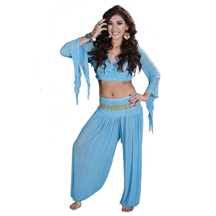 Belly Dance Harem Pants & Choli Top Costume Set | SHEER HAREM