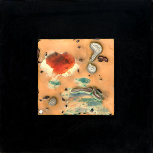 A day at the beach,  Enamel on copper panel with eutectic fired fine silver