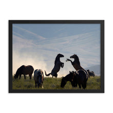 Load image into Gallery viewer, Framed poster - Onaqui wild horse herd