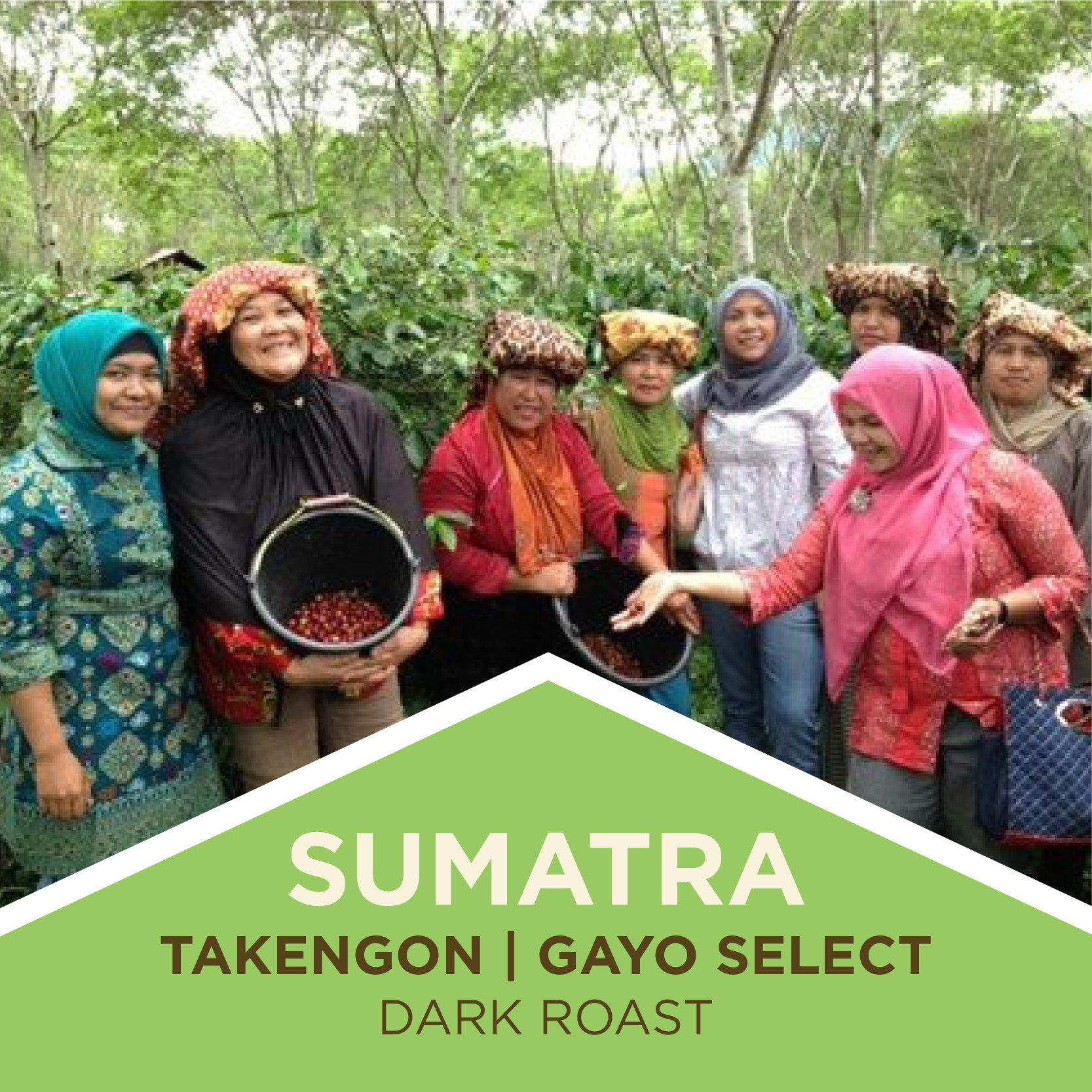 Sumatra | Takengon Gayo Select - Dark Roast