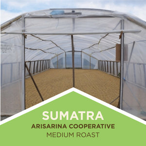 Sumatra | Arisarina Cooperative - Medium Roast