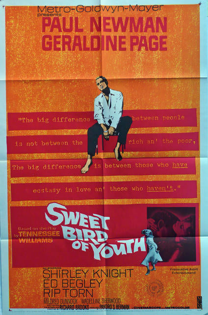 Sweet Bird of Youth, Paul Newman, Original Movie Poster  USA 1962