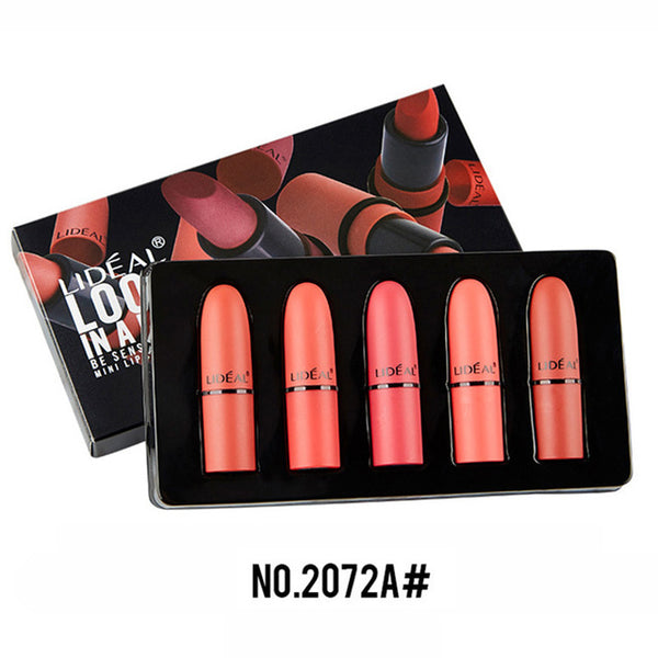 5pcs/set Mini Matte Nude Lipstick Waterproof Long Lasting LIDEAL