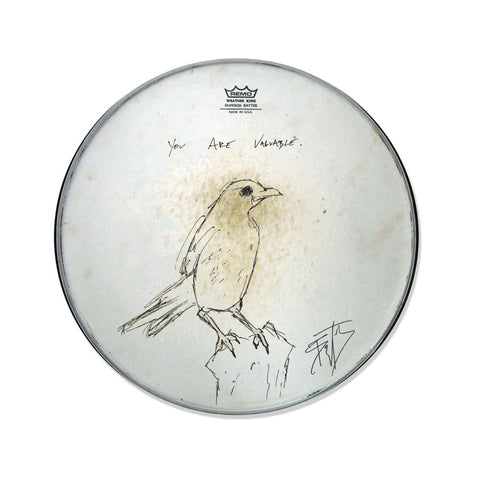 ACTUAL DRUMHEAD USED ON SWEET SHIVERS - SIGNED & PAINTED BY BRYCE + ALL ACCESS