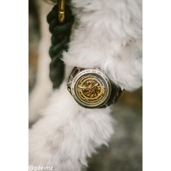 STEAMPUNK worn by your trusted and best friend