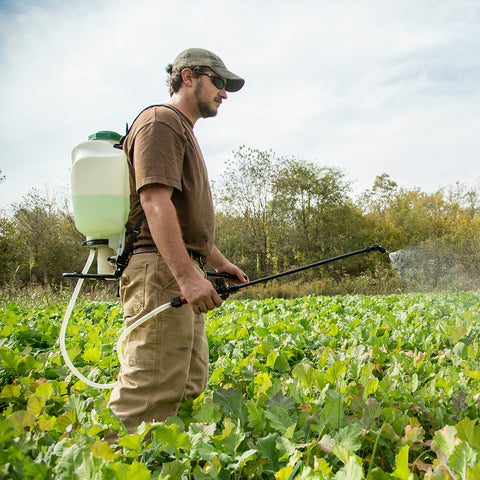 Food Plot Fertilizers and Management