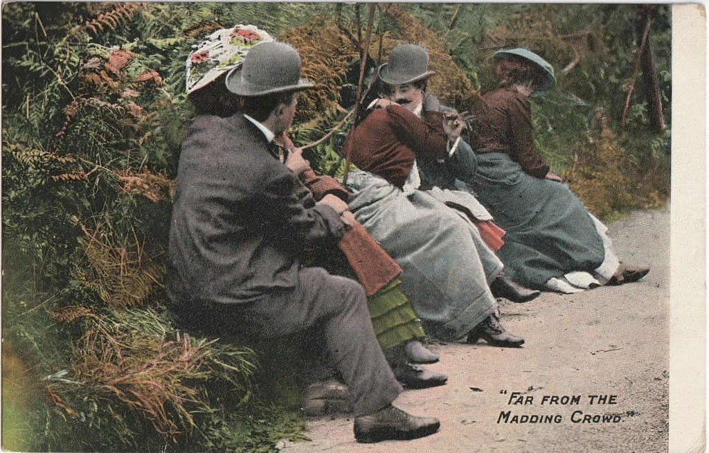 Far From the Maddening Crowds Antique Postcard