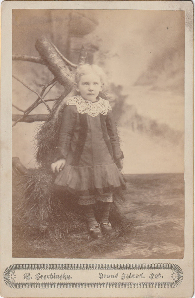 Ghostly Victorian Child Photo