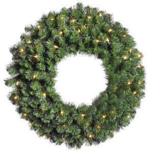 24 inches Douglas Wreath Dura-Lit 50CL 200T