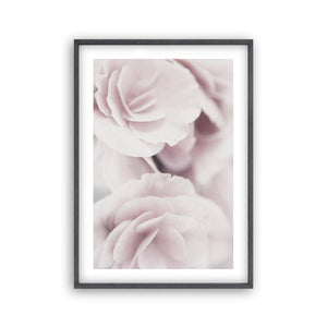 Dusty Rose Print - Blim & Blum