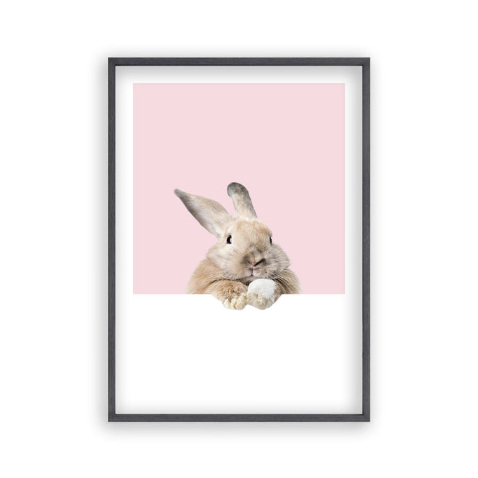Rabbit Peeking Print