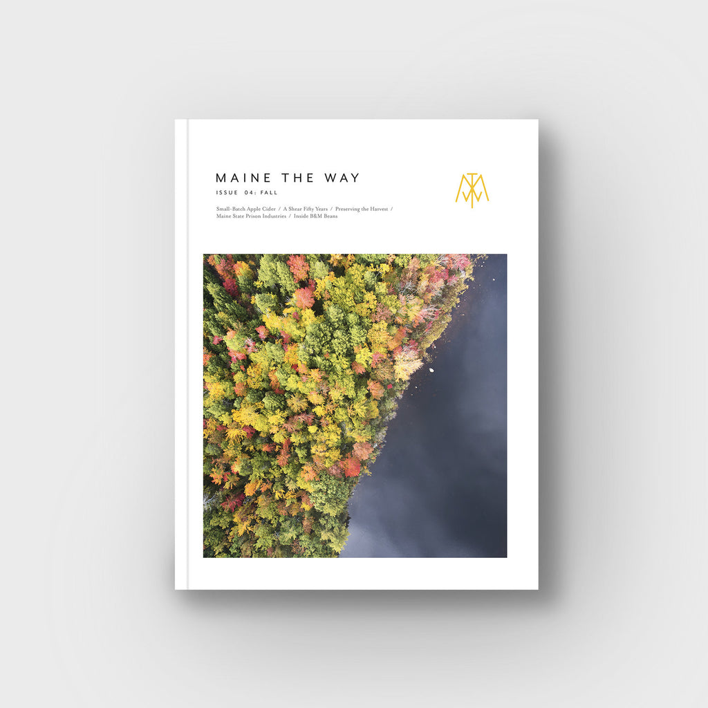 Issue 04: Fall