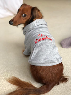 Custom DOG hoodies for Dachshunds