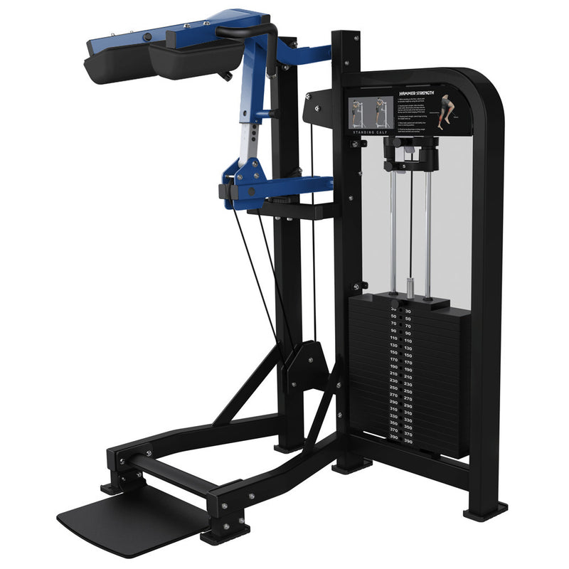 Hammer Strength Select Standing Calf in black and blue.
