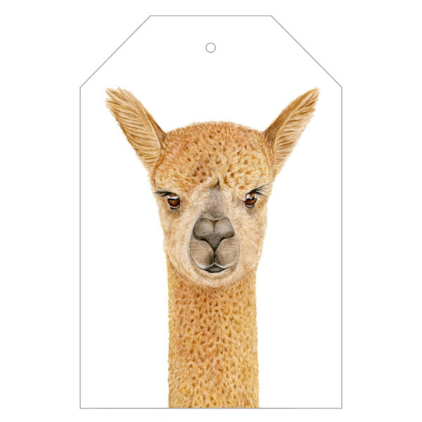 Alice the Alpaca Gift Tag Pack - For Me By Dee