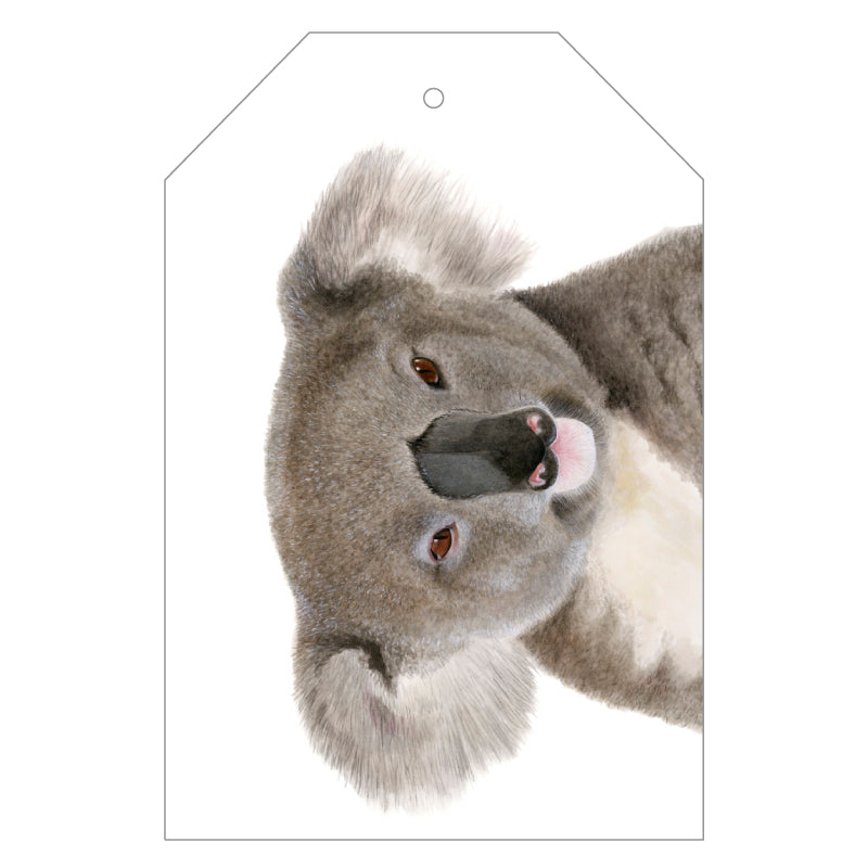 Kev the Koala Gift Tag Pack - For Me By Dee