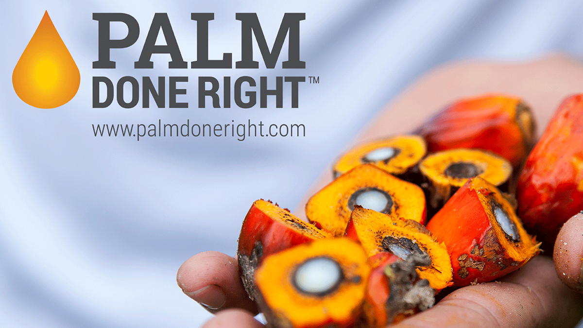 Palm Done Right: Sustainably Producing Palm Oil