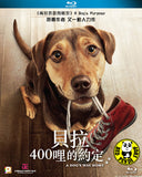 A Dog's Way Home 貝拉400哩的約定 Blu-Ray (2019) (Region A) (Hong Kong Version)