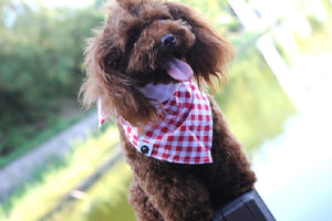 Bandanna Collar Tie Fashion