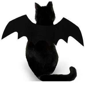 Black Halloween Collar Lead