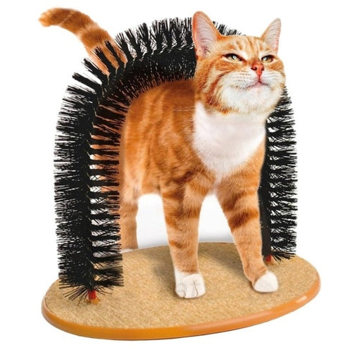 Cat Self-Help Hair Brushing